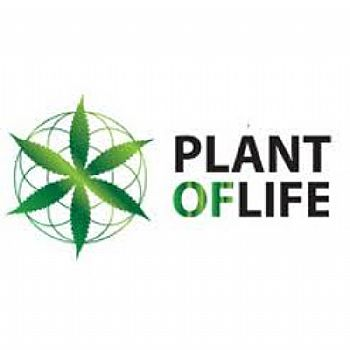 Plant Of Life Terpenes OG Kush - 1ml